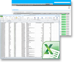 Reporting in Excel